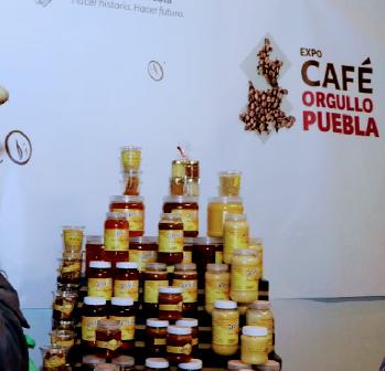 El rescate del café poblano:  Consejo Mexicano