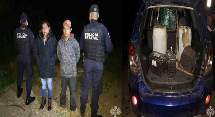 Capturan a pareja presuntamente responsable de robo de hidrocarburo