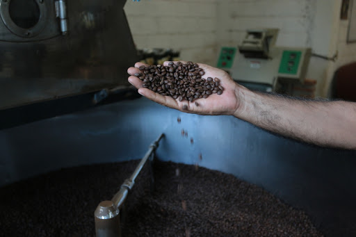 Inicia SDR con programa de recuperación de la cafeticultura poblana