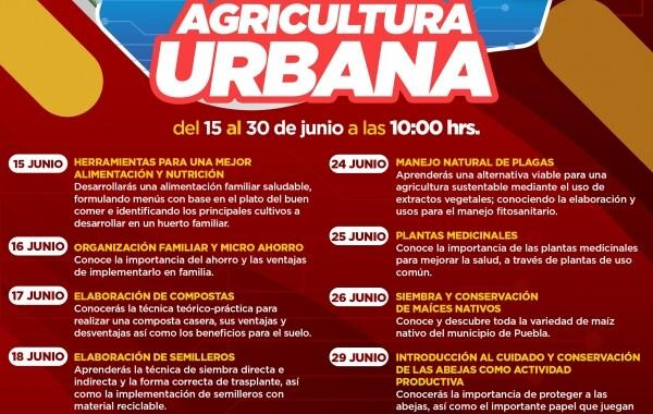 Gobierno de la Ciudad impulsa autosuficiencia alimentaria en la capital