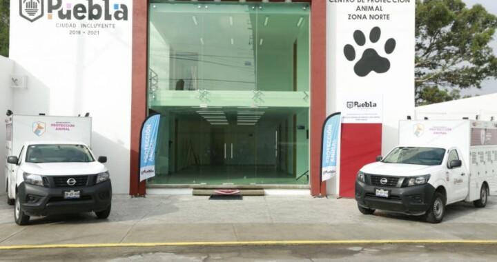 Reconstruye Ayuntamiento centro de atención animal para pequeñas especies
