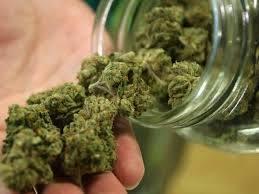 ¿Por que estar en contra de la legalización de la marihuana?