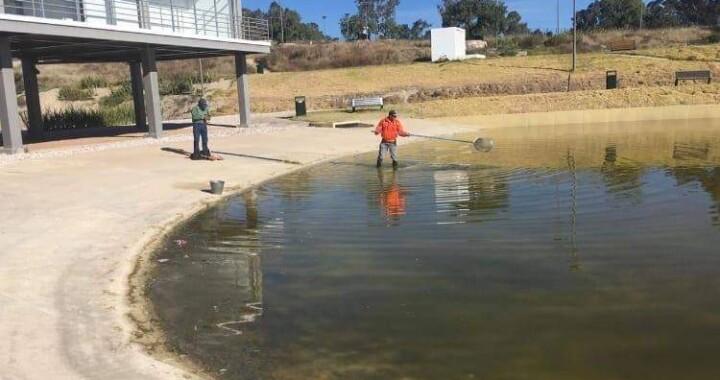 Transformación del ojo de agua del Parque Amalucan se realizará hasta 2021