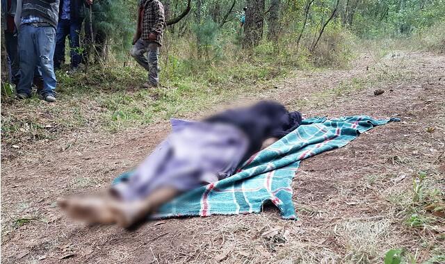 Marinos ejecutaron a 4 pobladores de Santa Rita Tlahuapan: CNDH