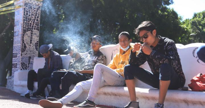 Fuman marihuana en Paseo Bravo y piden jardín cannabico