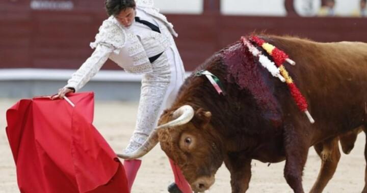 Ayuntamiento realiza foro para conocer las diferentes posturas en torno a las corridas de toros