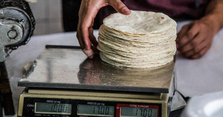 La tortilla será más cara a partir de Diciembre