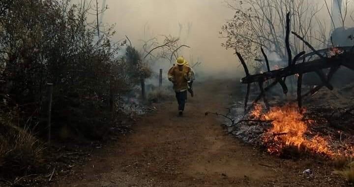 Reporta Medio Ambiente cuatro incendios forestales en diciembre