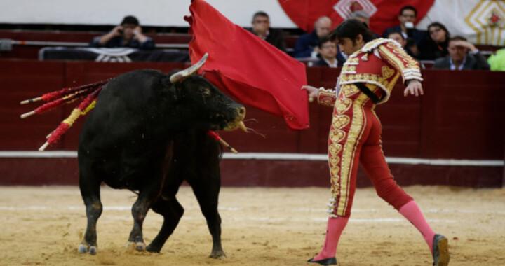Barbosa se pronuncia a favor de las corridas de Toros