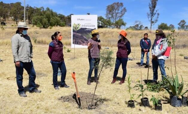 Inicia Jornadas de Arborización con Especies Nativas 2021