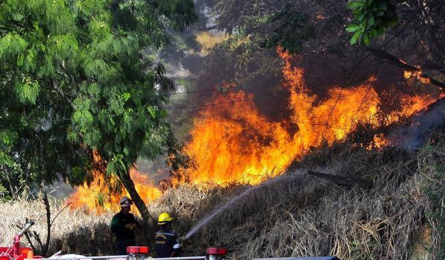Puebla capital registra 46 incendios en lo que va del año: Protección Civil