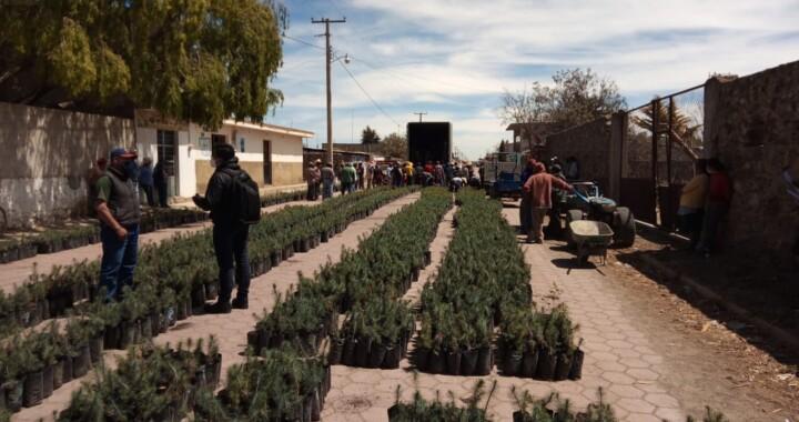 Fundaciones Grupo México y Granjas Carroll de México entregan árboles frutales a productores de Puebla