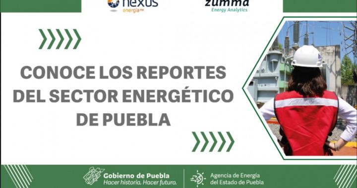 Agencia de Energía publicó reporte de los sectores energéticos