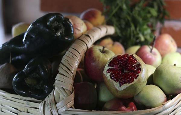 SDR promueve consumo local de ingredientes del Chile en Nogada