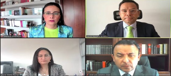 Tribunal Electoral desecha denuncia de candidato independiente en contra de Norma Layón