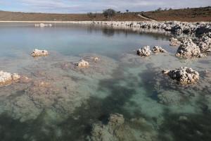 Vigila Gobierno zonas en Laguna de Alchichica para evitar obras: Barbosa