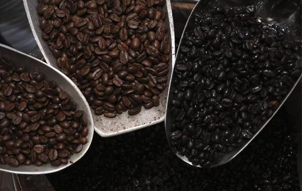 Día Internacional del Café; mantiene SDR recuperación de la cosecha