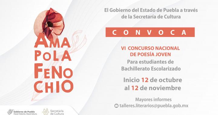 """Invita Cultura al VI Concurso Nacional de Poesía Joven """"Amapola Fenochio"""""""