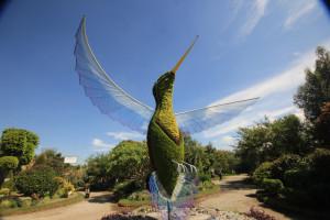 Viveros e Invernaderos, Una vida botánica en Atlixco